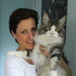 Vier Pfoten Tierheilpraxis Minou Cornils für Katzen